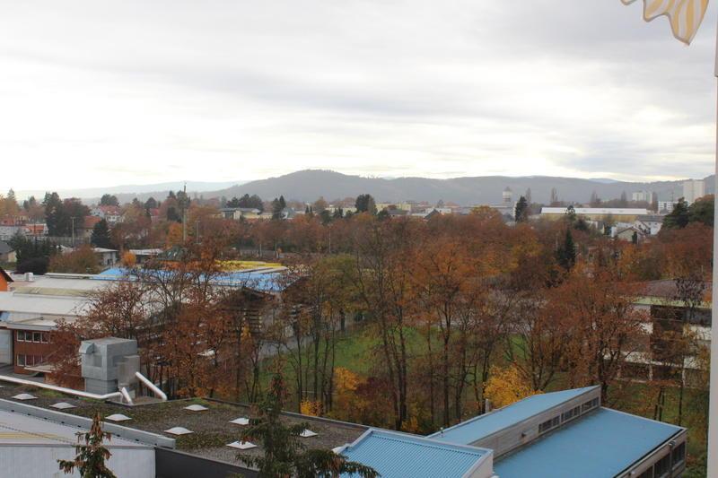 Gehobenes Wohngefühl über den Dächern von Graz!