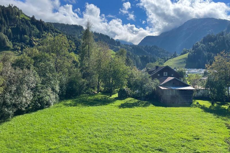 Sonnige Dachgeschoßwohnung in Hollersbach